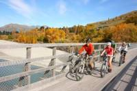 Full Day Bike Tour of Queenstown Trails