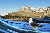 Full day excursion to Essaouira from Marrakech