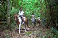 Full-day Horse Riding and ATV Tour from Cairns