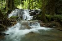 Full-day Krabi Hot Stream and Rainforest Tour