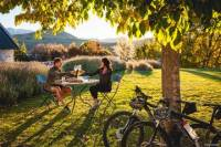 Full Day Self-Guided Bike Tour of the Wineries