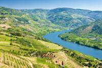 Full-Day Tour in Douro with Lunch