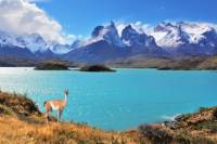 Full-Day Tour of Torres del Paine National Park from Puerto Natales