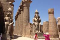Full Day Tour to Best Monuments of Luxor from Luxor
