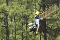 Gatorland Orlando Zipline Adventure