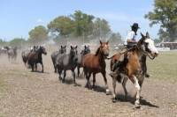 Gaucho Day Trip from Buenos Aires: Don Silvano Ranch