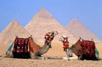 Giza Complex and the Egyptian Museum Private Tour From Cairo