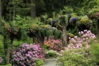 Glacier Gardens Rainforest Adventure in Juneau