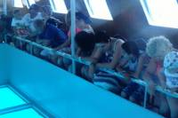 Glass Bottom Boat Sharm el Sheikh