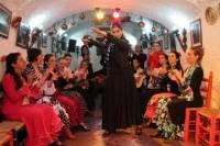 Granada Flamenco Show in Sacromonte and Walking Tour of Albaicin