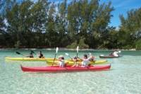 Grand Bahama Island Jeep and Kayak Adventure from Freeport