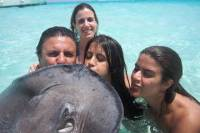 Grand Cayman Combo Tour: Stingray City and Turtle Farm