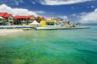 Grand Cayman Shore Excursion: Island Sightseeing Tour by 4x4
