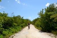 Grand Cayman Shore Excursion: West Bay Bike Tour