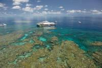 Great Barrier Reef Day Cruise from Cairns Including Snorkeling and Marine Biologist Presentation