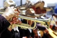 Guadalajara Nightlife: Mariachi Music and Tequila Tasting