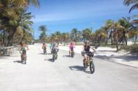 Guided Electric Bike Tour of Key Biscayne or South Beach