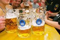 Guided Oktoberfest Tour and Evening at the Hofbräu Tent Including Beer and Oktoberfest Museum Tour