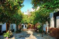 Guided tour Monuments of Seville