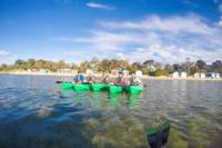 Half-Day Guided Kayak Tour of Capel Sound from Rosebud West