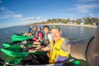 Half-Day Guided Kayak Tour of Martha Cove from Rosebud West