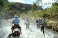 Half Day Horseback Riding Adventure
