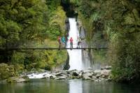 Half-Day Milford Track Guided Walk