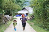 Half-Day Tour of Hoang Lien National Park and Sin Chai Village from Sapa