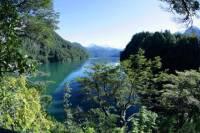 Half-Day Trip to Bosque de Alerces Milenarios