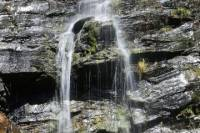 Half-Day Waterfall Gully to Mount Lofty Hike from Adelaide