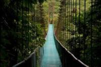 Hanging Bridges Walking Tour in Arenal