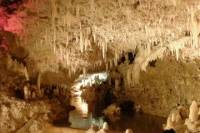 Harrison's Cave Tour in Barbados