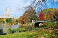 Highlights of Central Park Walking Tour
