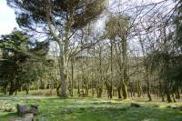 Hiking Montejunto Mountain and Royal Ice Factory Visit from Lisbon