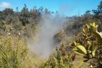 Hilo Hot Steam Volcano Tour