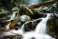 Hong Kong Hiking Tour in Tai Mo Shan with Waterfall Adventure