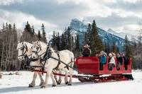Horse-Drawn Sleigh Ride in Banff
