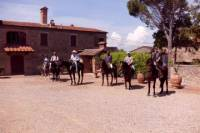 Horse Riding in Casentino