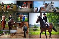 Horse Riding Lesson in Kalamata