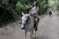 Horseback-Riding Tour from Paraty