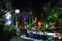 Hunter Valley Gardens Christmas Lights Spectacular from Sydney