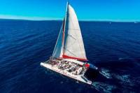 Hvar and Brac Party Catamaran with Food and Drinks from Split