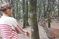 Is Cannoneris Nature Reserve Walking Tour