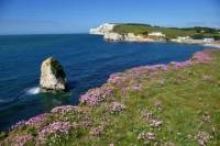Isle of Wight Overnight Tour from London