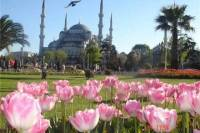 Istanbul Highlights Walking Tour