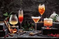 Italian Cocktail and Liquor Tasting in the Evening