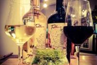 Italian Experience: Wine and Food Tasting in Rome