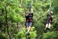 Ixpanpajul Natural Park Zipline and Eco-Adventure Tour from Flores