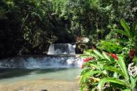 Jamaican South Coast Private Sightseeing Tour