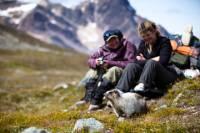 Jasper to Banff One-Way Tour